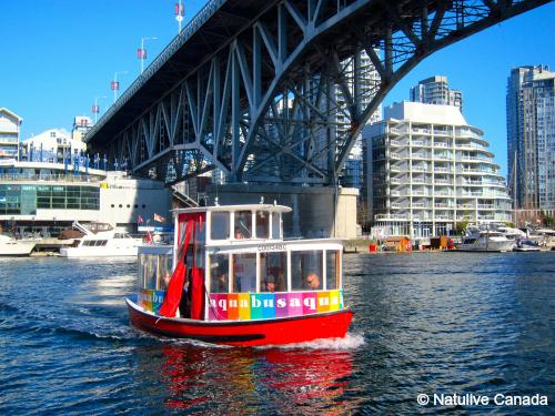 小型船アクアバスに乗船